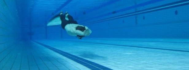 Basenowy kurs freedivingu dla zaawansowanych – Apnea Academy trzeci stopień – jesień 2012